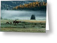 Misty Breakfast Greeting Card