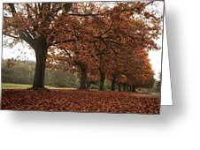 Misty Colours Of Autumn Greeting Card