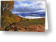 Misty Day In The Cairngorms II Greeting Card