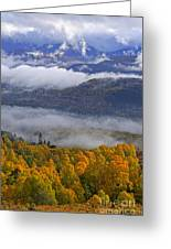 Misty Day In The Cairngorms Greeting Card