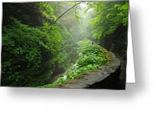 Misty Evening At Watkins Glen Greeting Card