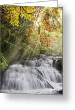 Misty Falls At Coker Creek Greeting Card