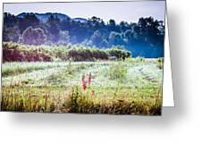 Misty Field In Blue Ridge Mountain Farmlands Greeting Card