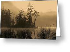 Misty Lake And Trees Silhouette Greeting Card