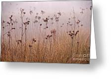 Misty Meadow Greeting Card