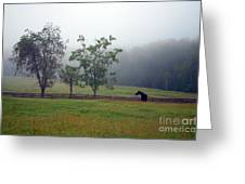 Misty Morning At The Farm Greeting Card