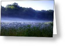 Misty Morning At Vally Forge Greeting Card