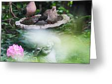 Misty Morning Doves Greeting Card