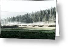Misty Morning In Yosemite Greeting Card