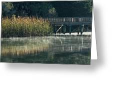 Misty Pond Greeting Card