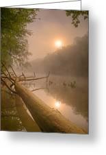 Misty Sun Greeting Card