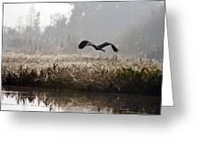 Misty Takeoff Greeting Card