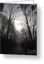 Misty Trail Greeting Card by Stephanie  Varner