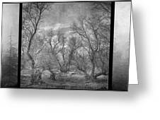 Misty Trees Tryptic Greeting Card