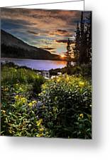 Mitchell Sunrise Greeting Card