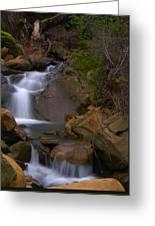 Mix Canyon Creek Greeting Card