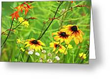 Mixed Flowers Bloom In A Garden Greeting Card