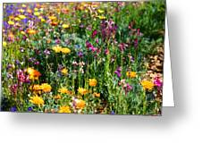 Mixed Wildflowers Greeting Card