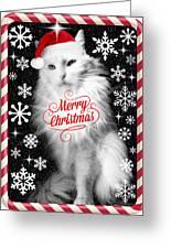 Mod Cards - I'm A Star Baby I'm A Christmas Star - Merry Christmas Greeting Card
