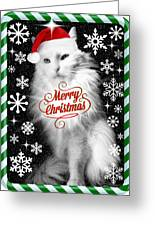Mod Cards - I'm A Star Baby I'm Christmas Star II - Merry Christmas Greeting Card