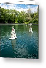 Model Boats On Conservatory Water Central Park Greeting Card