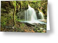 Mohawk Falls At Ricketts Glen Greeting Card