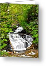 Mohican Falls Greeting Card