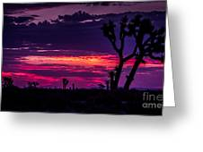 Mojave Desert Sunrise Greeting Card