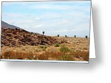 Mojave Desert Landscape Greeting Card