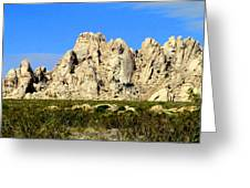 Mojave National Preserve Greeting Card