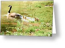 Mom And Babies Swimming Greeting Card