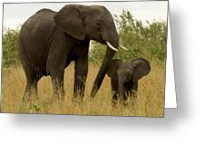 Mom And Little Greeting Card