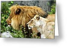 Mom And Pop Lion Greeting Card
