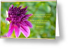 Moment Of Bloom Greeting Card