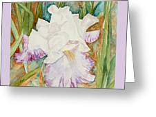 Mom's Iris Greeting Card
