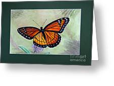 Viceroy Butterfly By George Wood Greeting Card