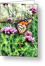 Monarch Butterfly On Pink Lantana Greeting Card