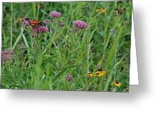 Monarch In The Wildflowers Greeting Card