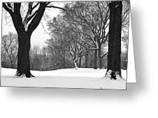 Monarch Park - 324 Greeting Card