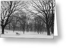 Monarch Park Ground Fog Greeting Card