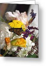 Monarch Vertical...   # Greeting Card