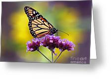 Monarch With Sunflower Greeting Card