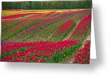 Monet Alive Greeting Card