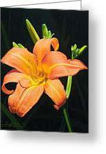 Monikas Orange Lily Greeting Card