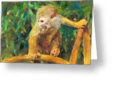 Monkey In Tree Greeting Card
