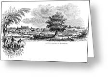 Monmouth Battlefield Greeting Card