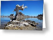 Mono Lake 5709 Greeting Card