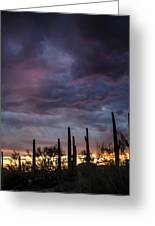 Monsoon Sunset Greeting Card