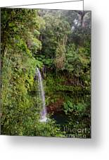 Montagne D'ambre National Park Madagascar 5 Greeting Card