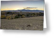 Montana Back Country Greeting Card by Dana Moyer